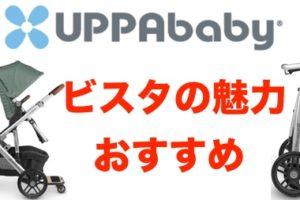 Uppababy (アッパベビー)ビスタのベビーカーは二人乗りで便利