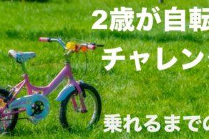 補助輪なしで自転車に乗れるまでの練習方法(2歳から)つづく